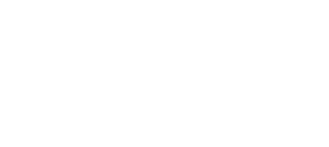 whiteDallas Museum of Art logo
